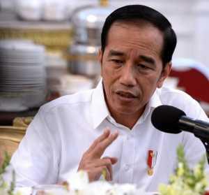 Presiden Jokowi (Foto: Instagram)