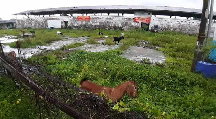 Pacuan kuda tampak tidak terawat di Kelurahan Parangtambung, Kecamatan Tamalate, Makassar