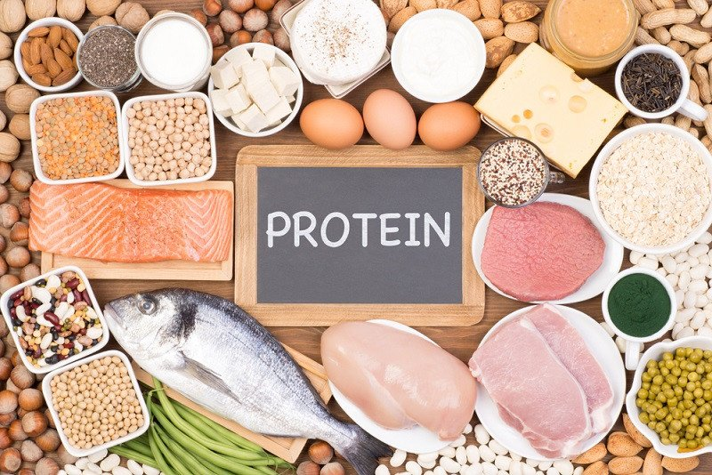 Image result for makanan protein