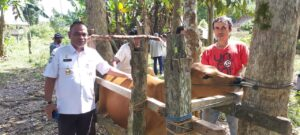Dinas Pertanian Peternakan dan Perkebunan Palopo